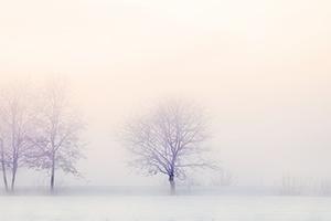 winter-landscape-2571788_640